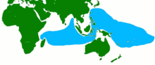 Coconut crabs occur on most coasts in the blue area