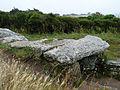 Dolmen des Pierres Plates (5).jpg