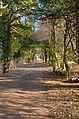 Driveway into Strathtyrum - geograph.org.uk - 340720.jpg
