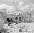 Druzische dorpsbewoners en jongvee op een pleintje bij een waterbron in een dorp, Bestanddeelnr 255-0126.jpg