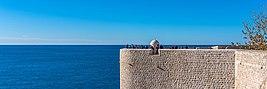Dubrovnik D81 4053 (38603397226)