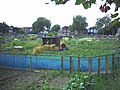 Eastfields Road allotments, Mitcham. - geograph.org.uk - 22093.jpg