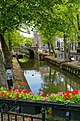 Edam - Spui - View East.jpg