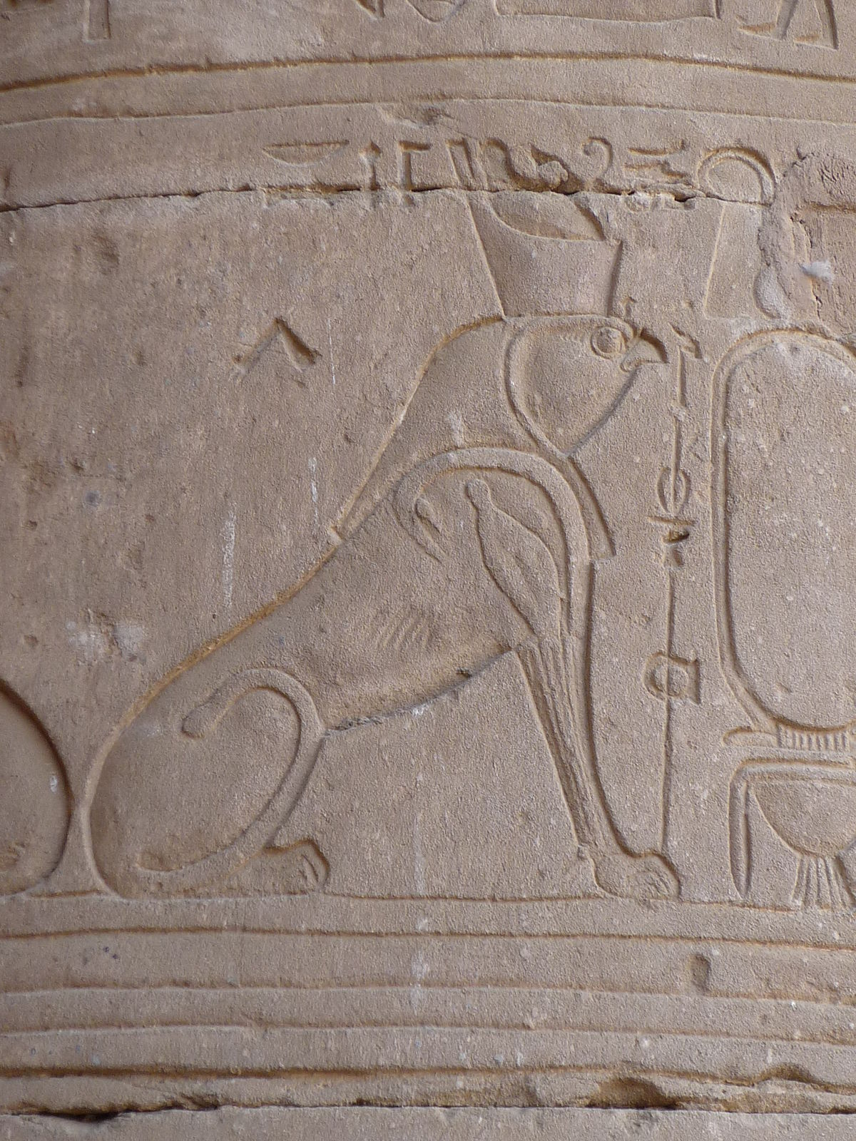 Hieracosphinx - Wikipe...