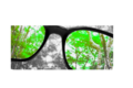Effect of colorblind glasses.png
