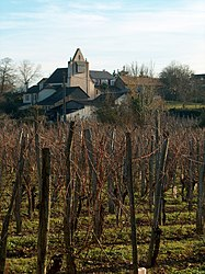 The church of Saint-Faust and a vineyard