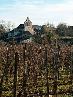 Saint-Faust Commune in Nouvelle-Aquitaine, France