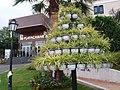 Ein schöner Blickfang am Hotel Playacanarias - panoramio.jpg