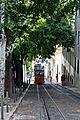 Elevador da Glória, Lisbon (10580675115).jpg