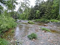 Ellis River, Jackson, New Hampshire.jpg