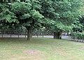 Entrance to St Hughs Hospital from Peakes Lane - geograph.org.uk - 1959993.jpg