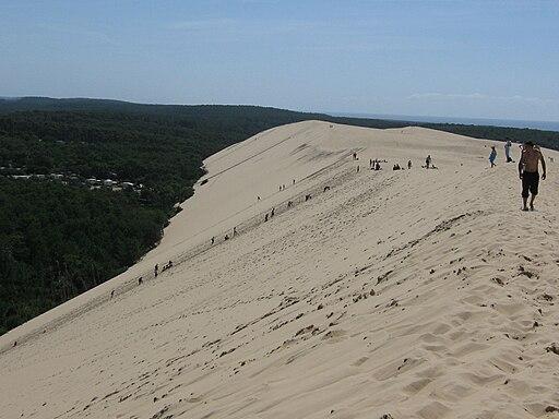 Envers de la dune