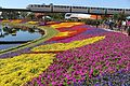 Epcot vibrant flowers and monorail train.jpg