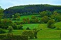 Es grünt so grün --- wenn's im Sauerland regnet. Und das kommt leider sehr oft vor (8878366070).jpg