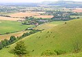 Escarpment, Edburton Hill - geograph.org.uk - 495658.jpg