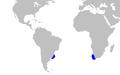 Euprotomicroides zantedeschia distmap.png