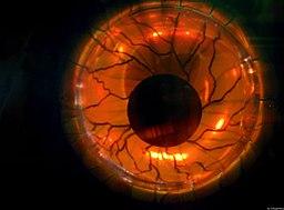 Evil Eye (15834385086)