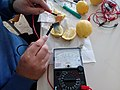 Experiment free electricity from lemon.jpg