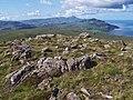 Exposed rock on Ben Lee - geograph.org.uk - 1403981.jpg