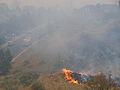 FEMA - 37457 - Wild fire on a hill in Colorado.jpg