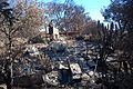FEMA - 39616 - Burned area in California.jpg
