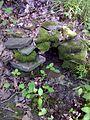FLT M09 1.12 mi - Covered spring at bivouac area - panoramio.jpg