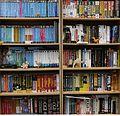 FOSDEM 2015 Perl bookshelf.jpg