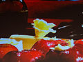 Fabulous Food Show - Jacques Pepin (8176922821).jpg