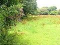 Field Near Newton - geograph.org.uk - 1480327.jpg