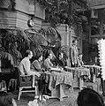 Filmexpeditie naar de Goudkust in Afrika, in opdracht van cacaofabrikant Van Hou, Bestanddeelnr 904-8680.jpg