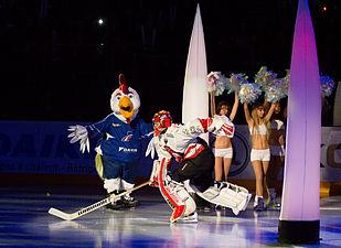 Finale de la coupe de France de Hockey sur glace 2013 - 007bis - Ronan Quemener.jpg
