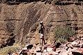 Fish river canyon-2154 - Flickr - Ragnhild & Neil Crawford.jpg