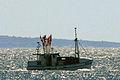 Fiskebåt1b.jpg