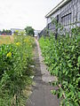 Footpath between Campbeltown Road and New Chester Road, Birkenhead.JPG