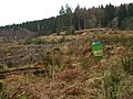 Forestry operations - geograph.org.uk - 102416.jpg