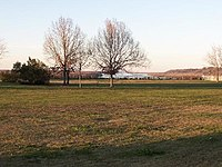 Grass and a few trees on flat ground, with the Mississippi River in the background