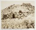Fotografi från Tiryns, Grekland - Hallwylska museet - 104611.tif