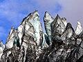 Fox Glacier NZ (7) (8400095824).jpg