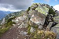 France - trail 7.jpg