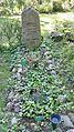 Friedhof piusgemeinde berlin Juni 2017 - 9.jpg