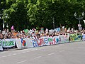 Front of the FridaysForFuture protest Berlin 24-05-2019 150.jpg