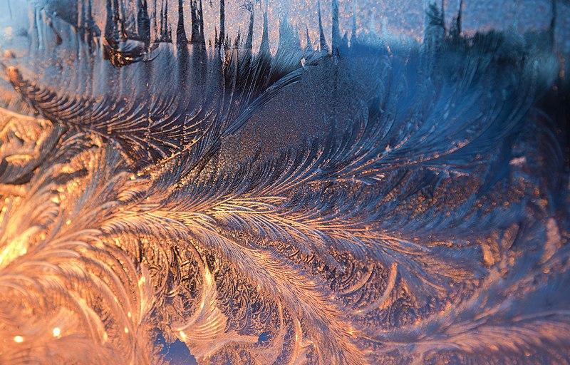 File:Frost on the window 03.jpg