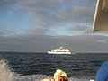 Galapagos2007--13--08-23-07.JPG