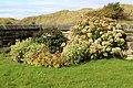 Garden, St Nicholas, Wallasey.jpg