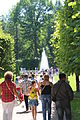 Gardens of Peterhof IMG 4128.JPG