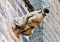 Gargouille de la cathédrale. (6).jpg