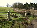 Gate, Old Combe Hill - geograph.org.uk - 1196510.jpg