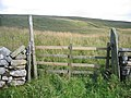 Gateway alongside Long Lane - geograph.org.uk - 1453666.jpg