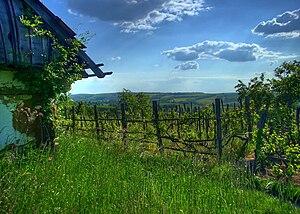 Zala County - Image: Genehegyi kilátás