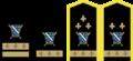 Generalski cinovi.png